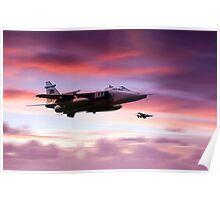 Jaguar Sunrise Poster