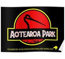 Aotearoa Park (Kiwi skull) Poster