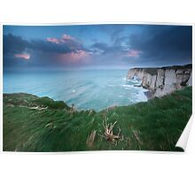 Cliffs and ocean Poster