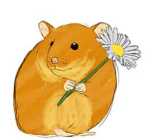 Hamster holding a flower Photographic Print