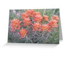 Fiery Paintbrush  Greeting Card