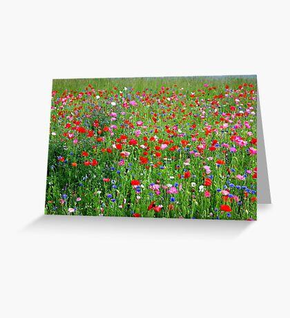 Poppy Riot 512 Greeting Card