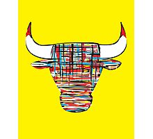 """Chi-Bull"" Photographic Print"