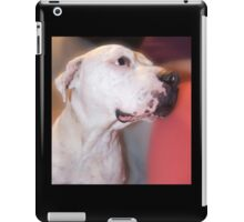 Pow pow the wonder dog iPad Case/Skin