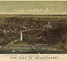 Antique Map of Washington, DC by Currier and Ives from c1892 by bluemonocle