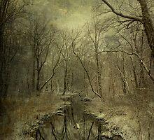 Snow 1 by Karen Johnson