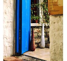 blue door and bull by gzmguvenc89