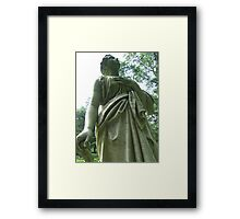 Stone Angel: Don't Blink Framed Print