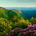 June Evening at Linville Gorge by Miles Moody
