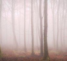 Trees Mist 2 by maratshdey