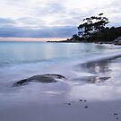 Alone on a Beach - Bay of Fires by Barbara Burkhardt