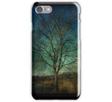 Tod's Point Jan 2014 Tree Series 2 iPhone Case/Skin