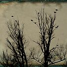 Bird Trees by gothicolors