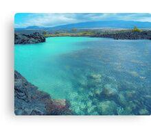 Hawaii bright blue waters print Canvas Print