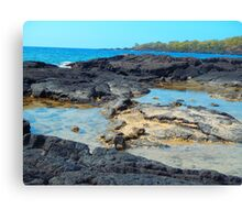 Hawaii Honounou beach scenery print Canvas Print