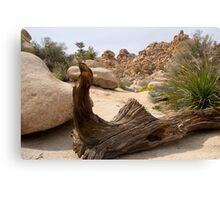 Desert Art Canvas Print