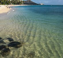 Waikiki Beach Sea and Sunshine by Georgia Mizuleva