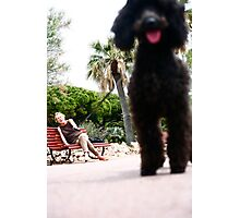The Poodle and its Master Photographic Print
