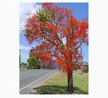 Illawarra Flame Tree, Grafton N.S.W. Australia Unisex T-Shirt