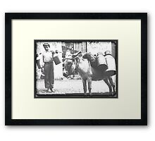 Donkey Delivery Framed Print