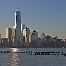 One World Trade Center Reflections by pmarella