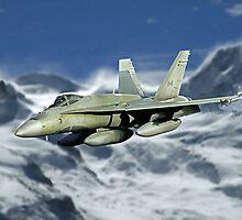 F-18 Hornet by Wildi