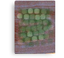 Desert Oak Wandsoro Orchard  Canvas Print