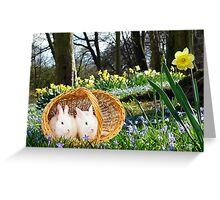 Spring Bunnies Greeting Card