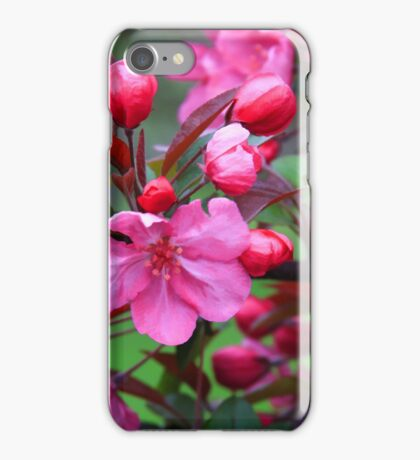 Crabapple Blossoms iPhone Case/Skin