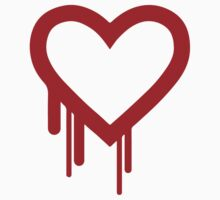Heartbleed by Vidoy