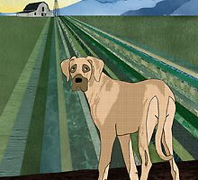 Farm Dog by Janet Carlson