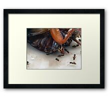 ©NS Clean Team IIIA Framed Print