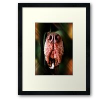 ©AS The Return Of The Jedi IAT Framed Print