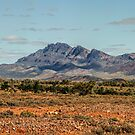 Flinders Ranges by julie anne  grattan