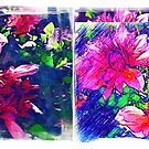 Playing around with dahlias by Madalena Lobao-Tello
