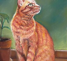 Tiger in the Window by Charlotte Yealey