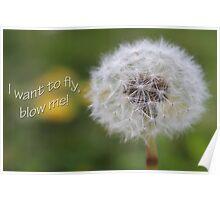 Blow me! Poster