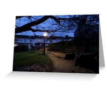 The only light in the park Greeting Card