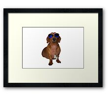 Dachshund Sausage Dog wearing Aviators Framed Print