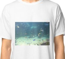 Multicoloured Fishes Classic T-Shirt