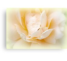 Stay As Sweet As You Are....  Canvas Print