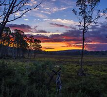 Sunset on the Overland Track Tasmania. by Nick Griffin