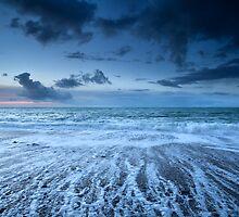 Ocean view by Olha Rohulya