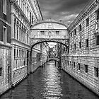 artistic view of Venice,Italy by canebisca