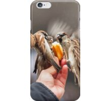 feeding sparrows iPhone Case/Skin