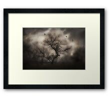 Svetlana's Tree Framed Print