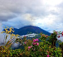 Tungurahua Volcano In The Ecuadorian Andes by Al Bourassa