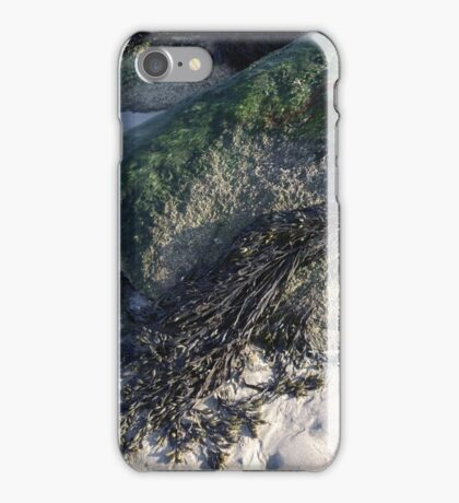Seaweed On The Rocks At Low Tide iPhone Case/Skin