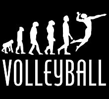 Volleyball Evolution by kwg2200