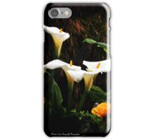 San Francisco Bay iPhone Case/Skin